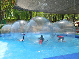 Running like a hamster in the bubble ball