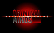 Criminal Minds: Beyond Borders (CBS)