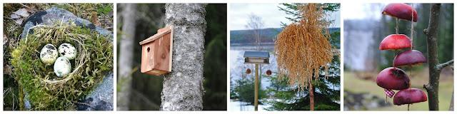 Holk, fågelbo och kärve