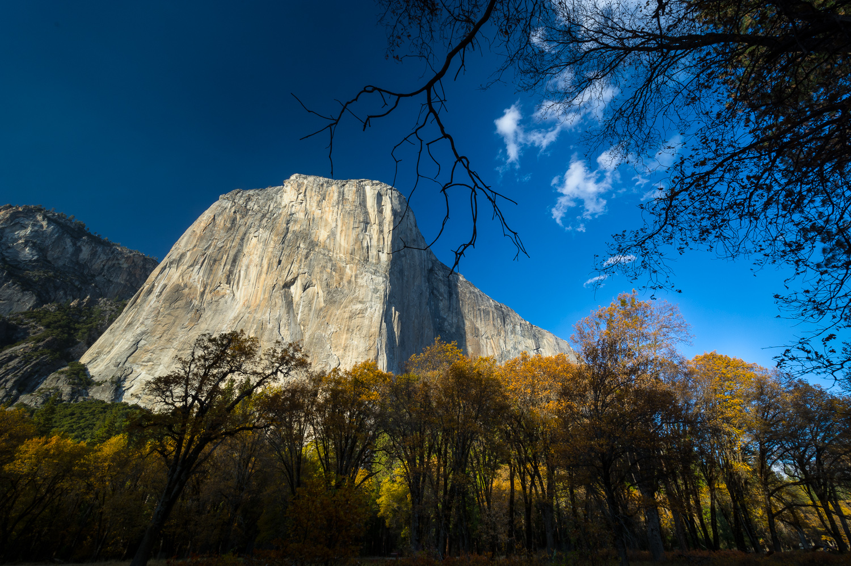 Yosemite encounter