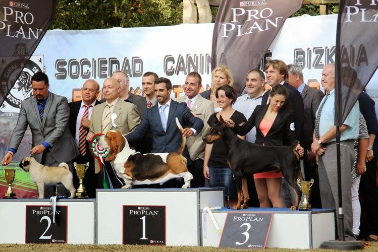 Muskiz acoge la 50ª Exposición Estatal y la 49ª Internacional Cani