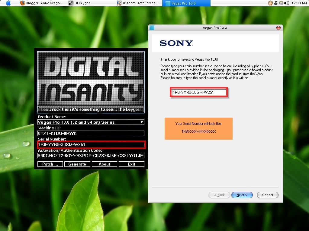 Copy Serial Number ở file crack rồi paste vào Vegas Pro 10.0 rồi chọn Next.