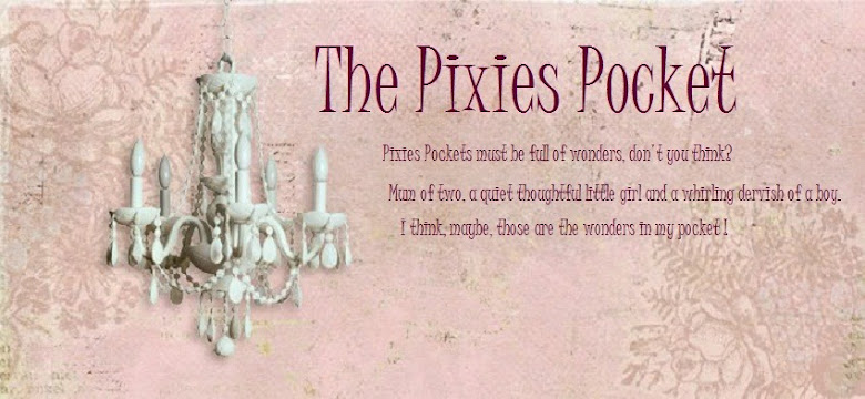 The Pixies Pocket
