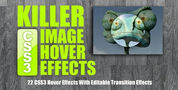 Killer CSS3 Image Hover Effects