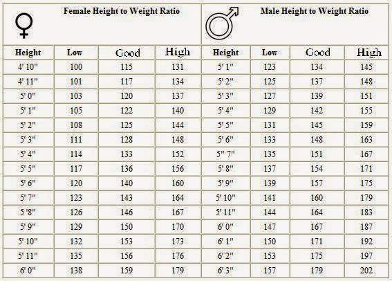 TelcelU News And Guides Green Corner Height Weight Chart