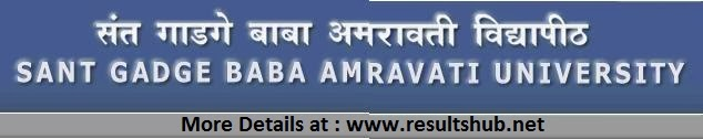 BA Part 1 Winter 2013 Result SGBAU Amravati University