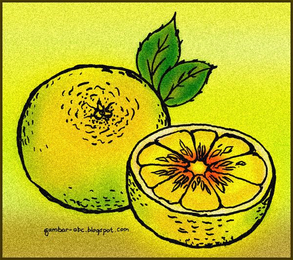 gambar buah jeruk