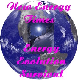 Energy Evolution Survival