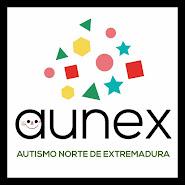 AUNEX PLASENCIA