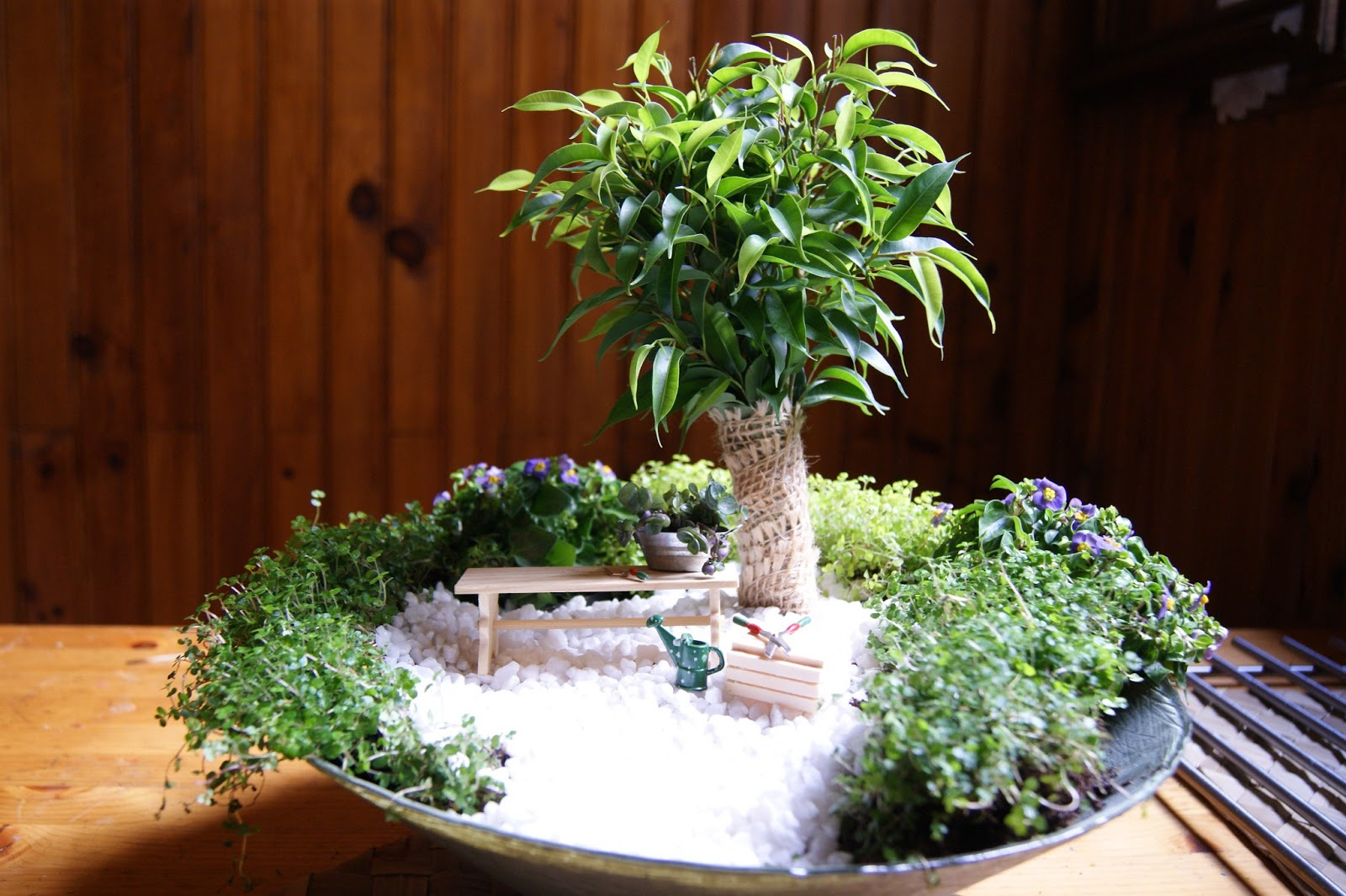 mini jardim apartamento:Mini Jardim – DECORAÇÃO DE INTERIORES
