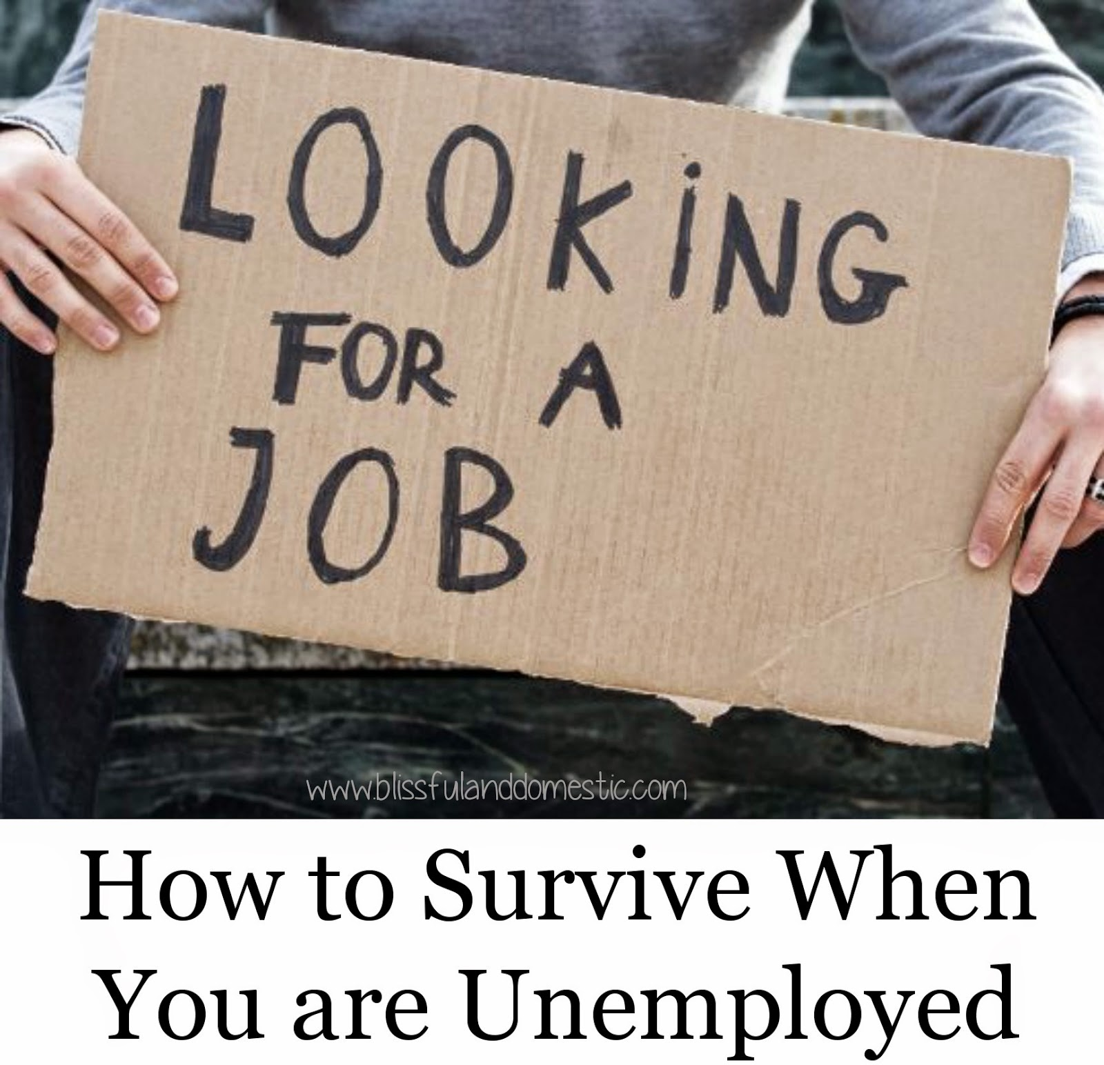 How to Survive When You are Unemployed...