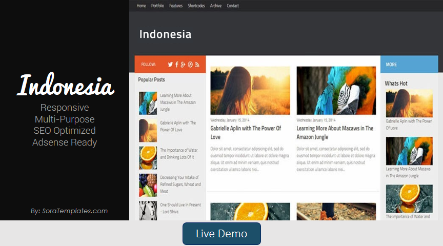 Indonesia Blogger Template