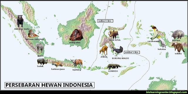 keanekaragaman hayati di indonesia, rangkuman materi, contoh dan manfaat