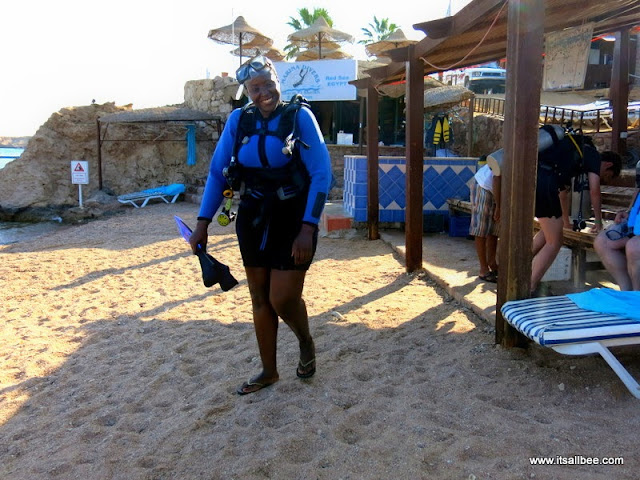 Red Sea Egypt | Diving Sharm El Sheikh