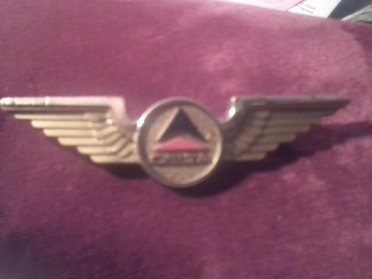 delta wings pin