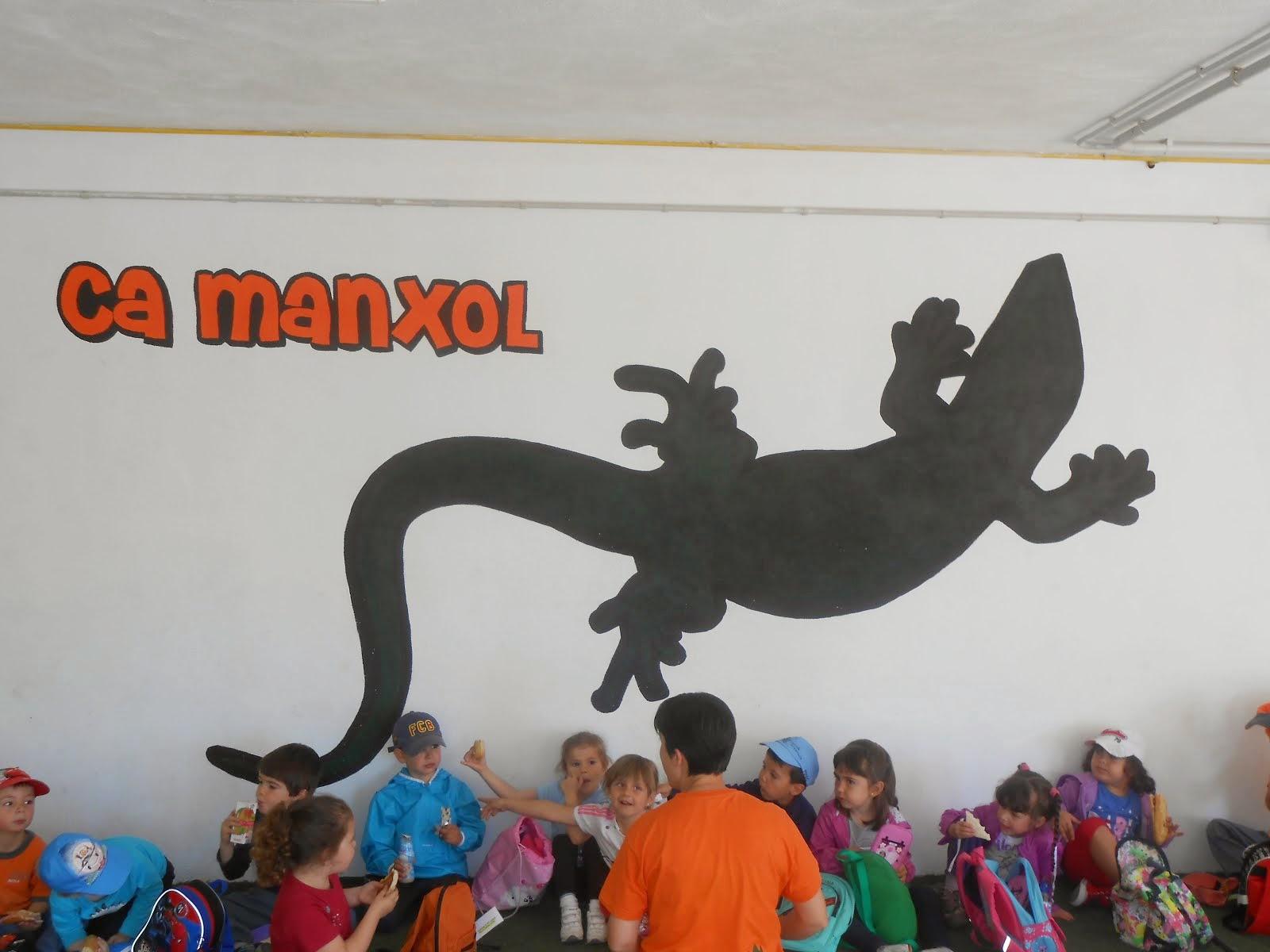 Ca Manxol- Rasquera  curs 2013-14