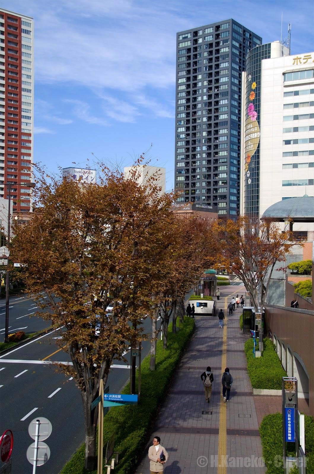 浜松駅からの秋の風景