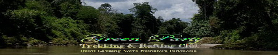 green party 67 Exciting jungle  l  Bukit Lawang