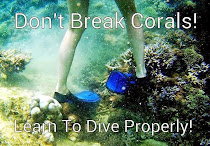 Don't BREAK Corals!