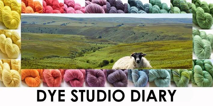 Dye Studio Diary