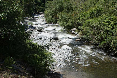 Río Chirripó Pacífico