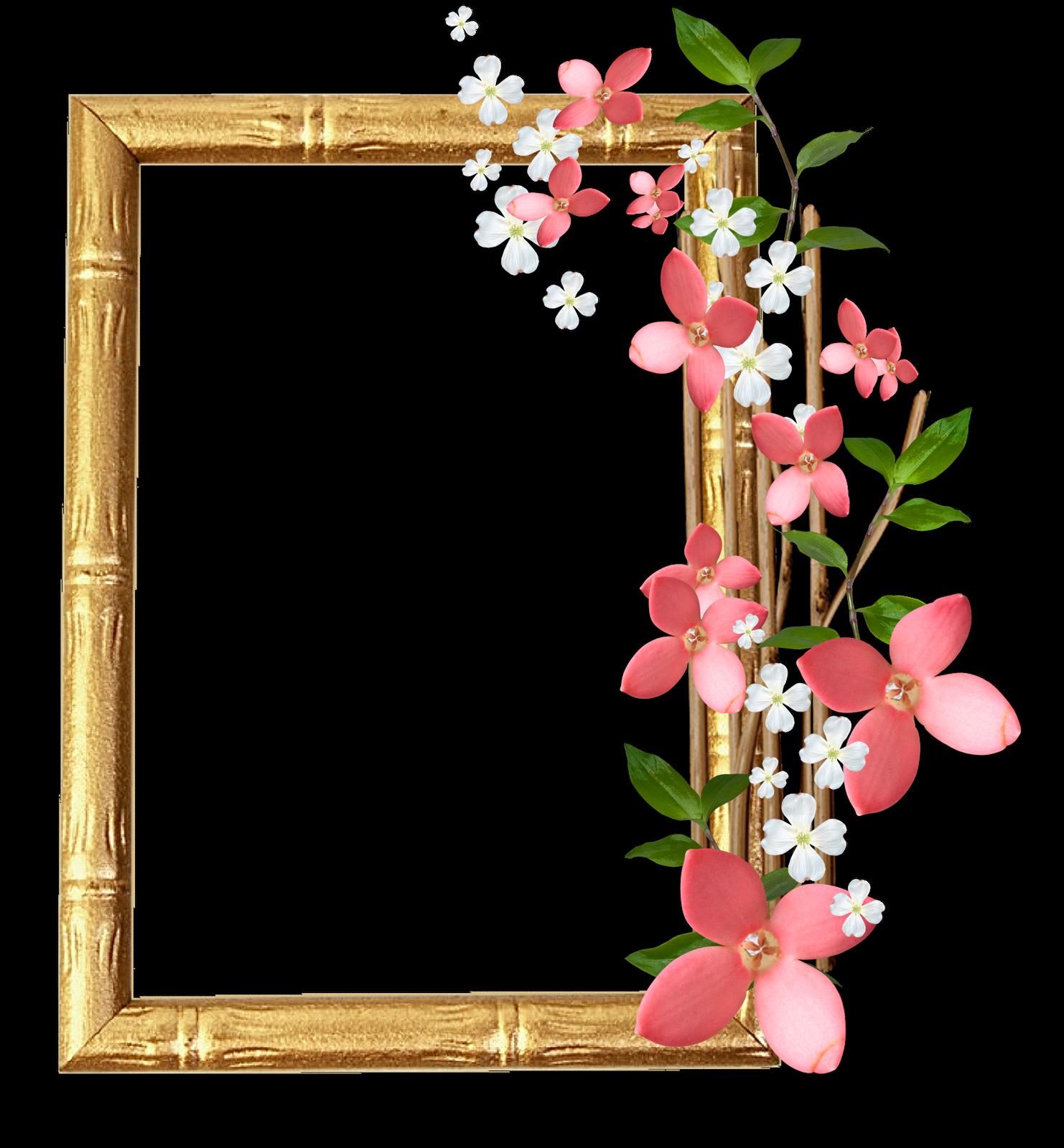 colecci n de gifs marcos para fotos de flores