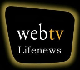 WEB TV  Life news