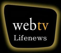 WEB TV  Life news