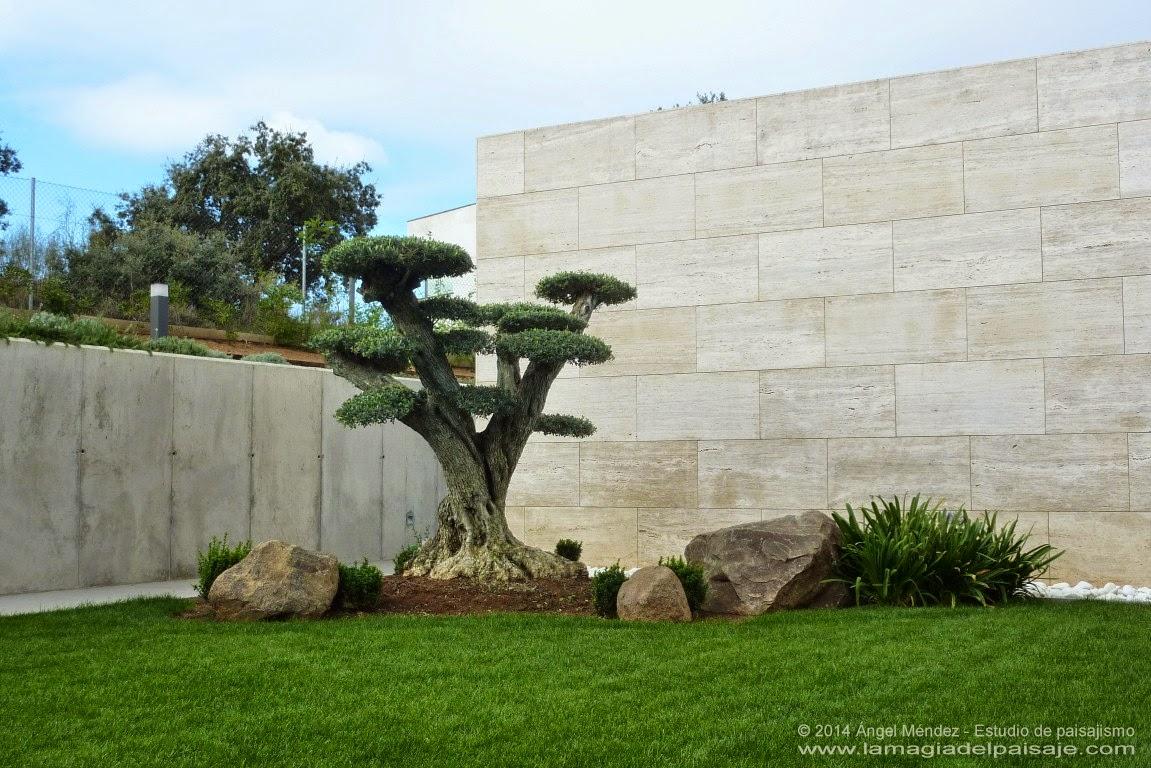 Jard n en vivienda de dise o urb miralr o m rida badajoz - Fotos de jardines decorados ...