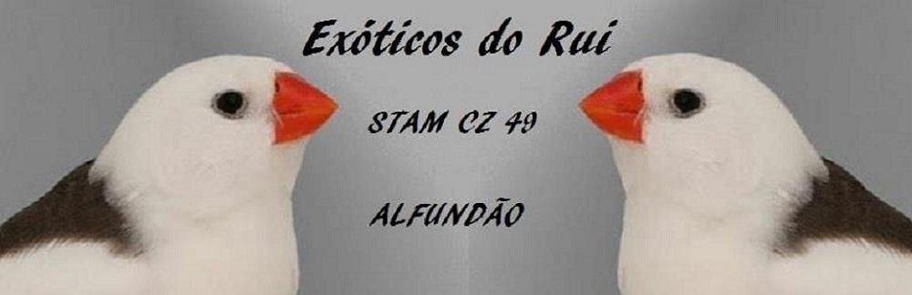 Exóticos do Rui