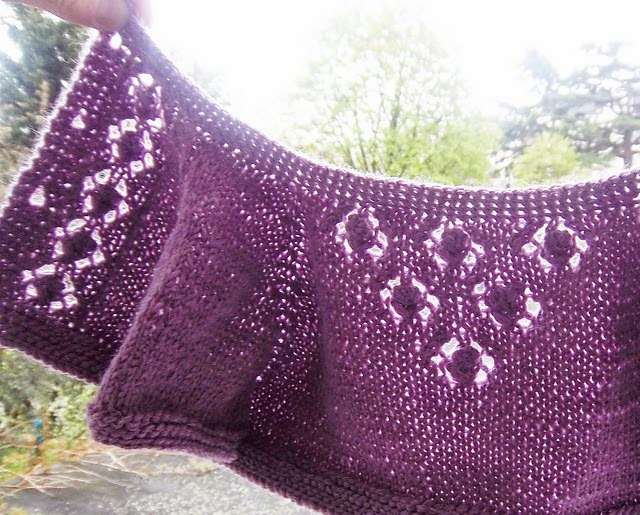 Violetta shrug