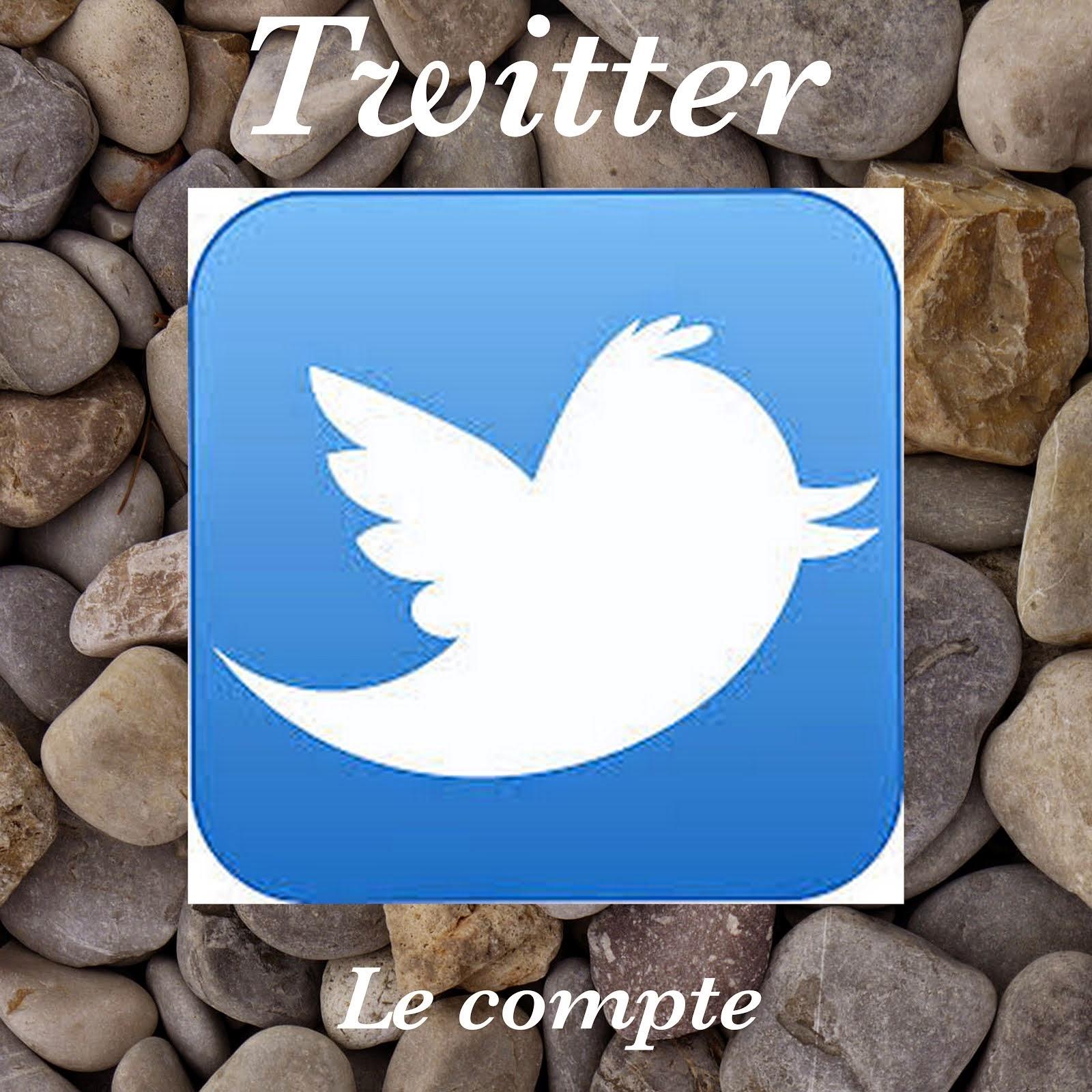 Suivre le blog sur Twitter
