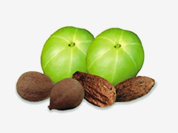 Triphala An Ayurvedic Remedy