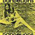 The Children Of Sunshine - Dandelions (1971)