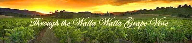 Through The Walla Walla Grape Vine