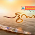 Pattu saree-Malayalam TV Serial on Mazhavil Manorama -Watch Recent episodes online