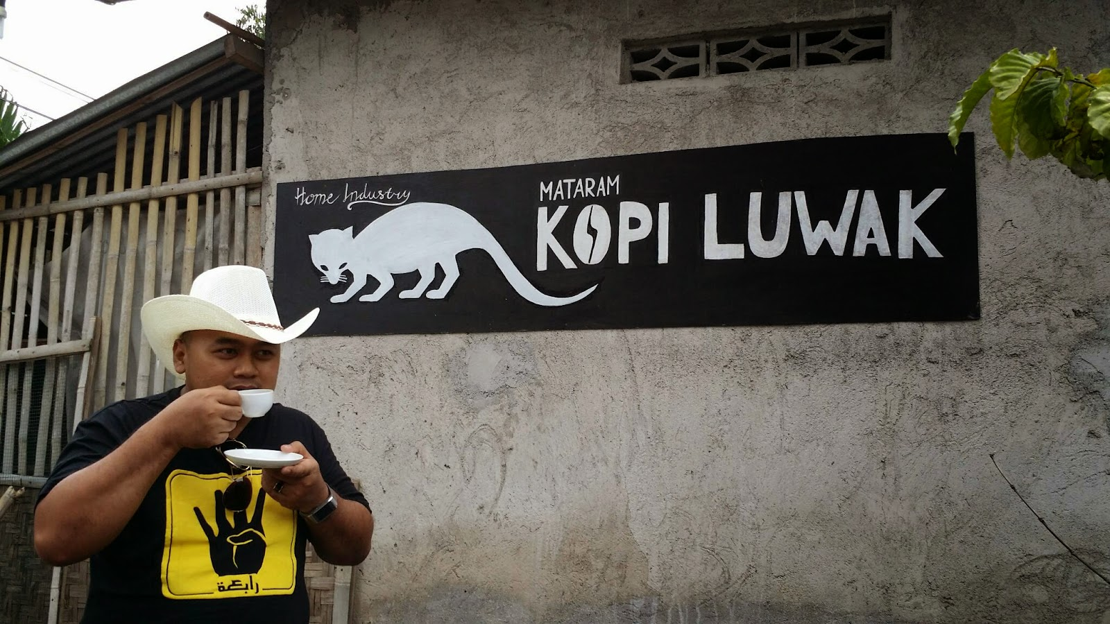 kopi luwak, indonesia, jogja, yogya, yogyakarta, jogjakarta