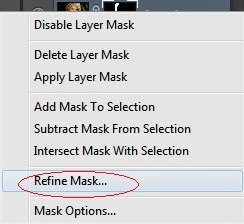 refine mask