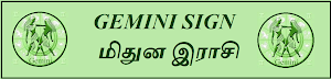 GEMINI SIGN - MITHUNA RASI