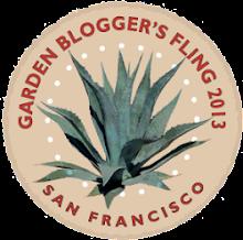 Garden Bloggers Fling 2013