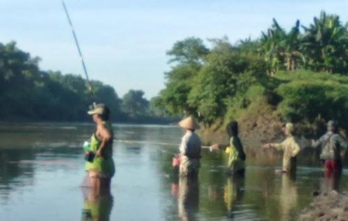 memancing ikan di bengawan solo