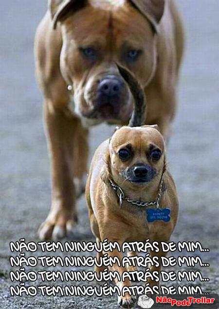 corre desse cachorrão, se vira ae nerdão heuaehuae
