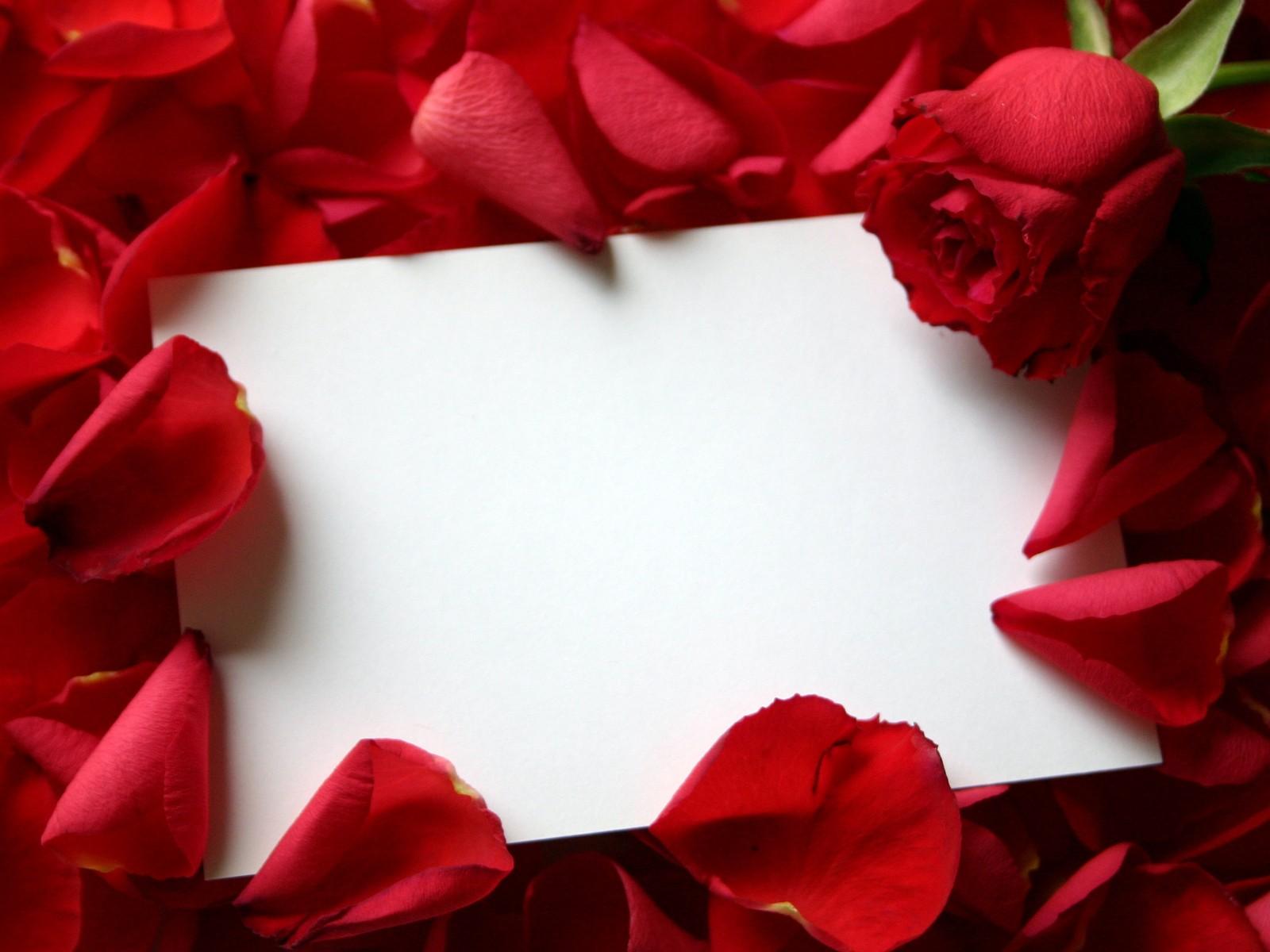 http://4.bp.blogspot.com/-2wawyJAp3CA/TtPob_MTAPI/AAAAAAAAAIE/EoGs2IBhcGI/s1600/roses_and_letter_desktop_wallpaper_35200.jpg