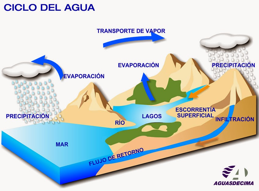 Ciclos Del Agua en la Naturaleza el Agua en la Naturaleza
