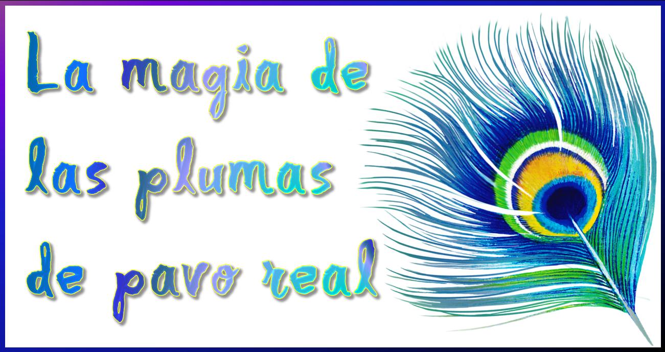 Esencia del Ser: La magia de las plumas de pavo real