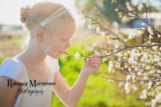 Rebecca Mortensen Photography