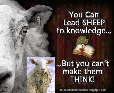 http://4.bp.blogspot.com/-2x1_c2_ZnKE/UzcHYcl5zTI/AAAAAAAAHYE/uhAGisLGDmY/s1600/SHEEPLE+CAN+NOT+THINK.jpg