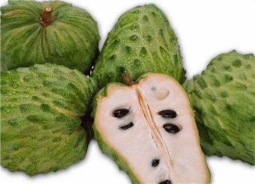 Graviola: dal Brasile, la frutta del benessere