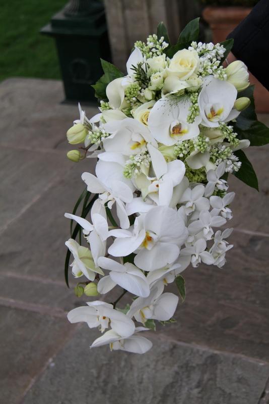 Cascade Orchid Bridal Bouquet : Bridal bouquets on cascade bouquet cascading