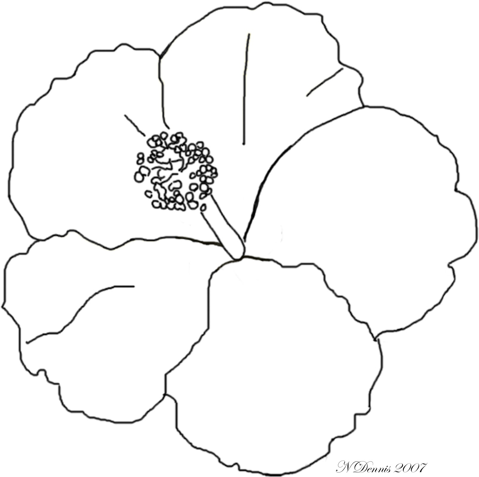 Coloring Pages Of Hibiscus Flowers : Nora s nifty notions just pictures